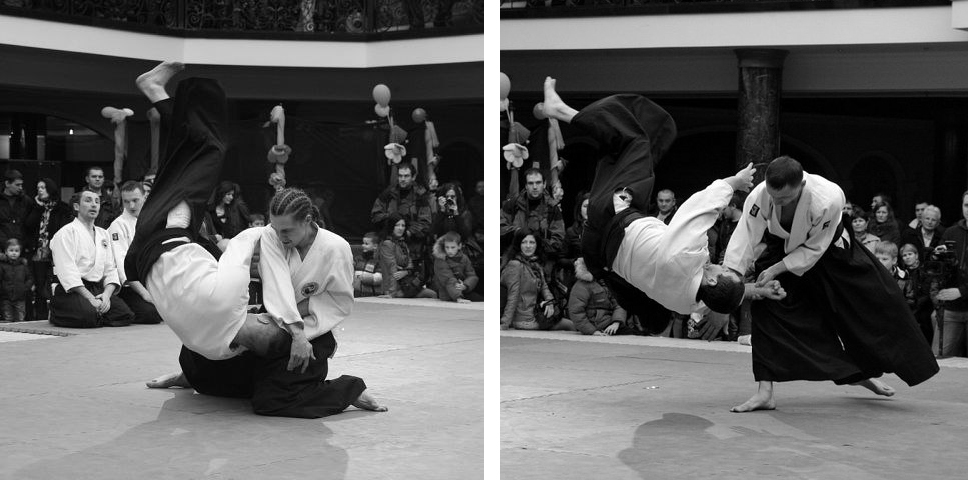 fest aikido